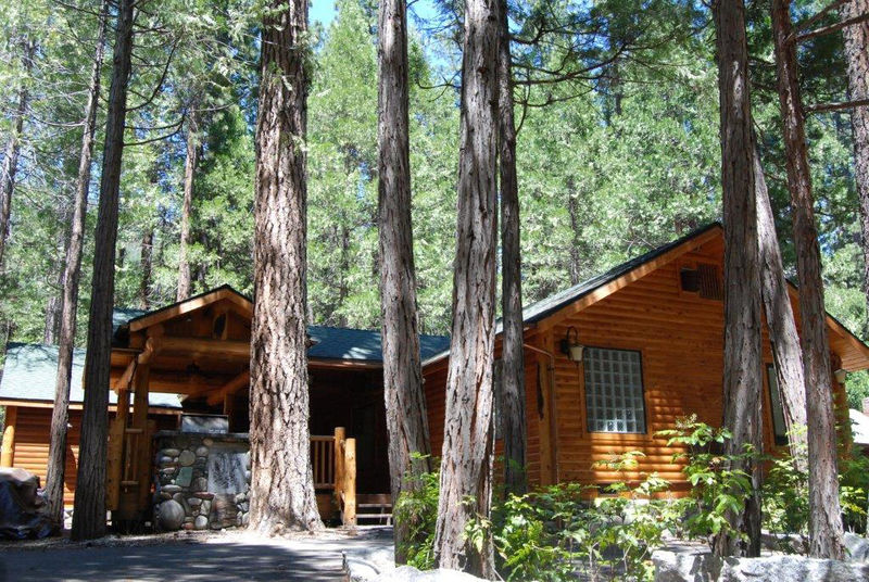 The Redwoods Grizzly Giant Platinum Home, Yosemite - 4 bedroom home