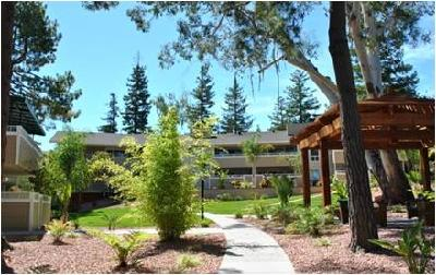 Sharon Grove, Menlo Park, 1 & 2 Bedroom Apartments **NEW**